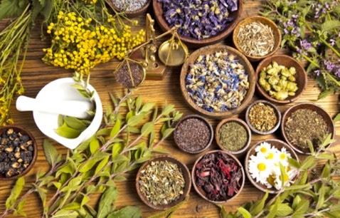 Herbal Medicine Course