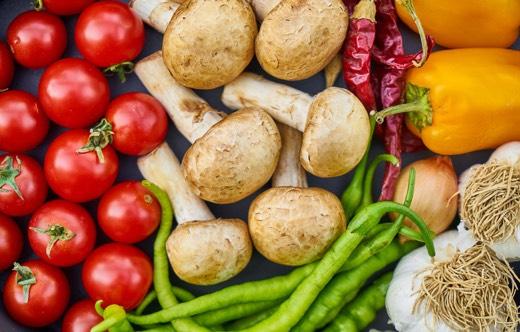 Vegan Nutrition Course